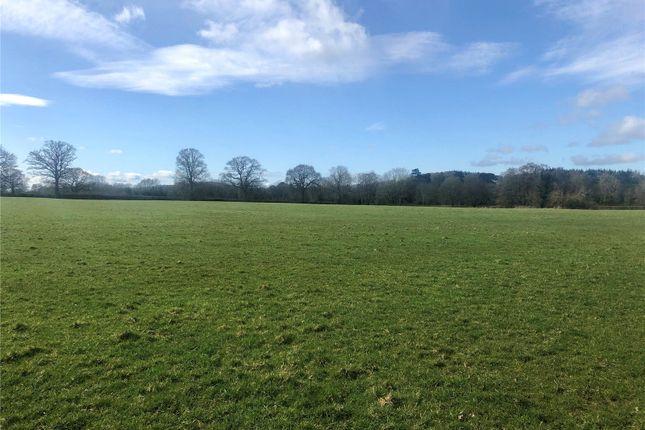 Thumbnail Land for sale in Land Adjoining Gwernhafod, Gwern Y Brenin, Oswestry, Shropshire