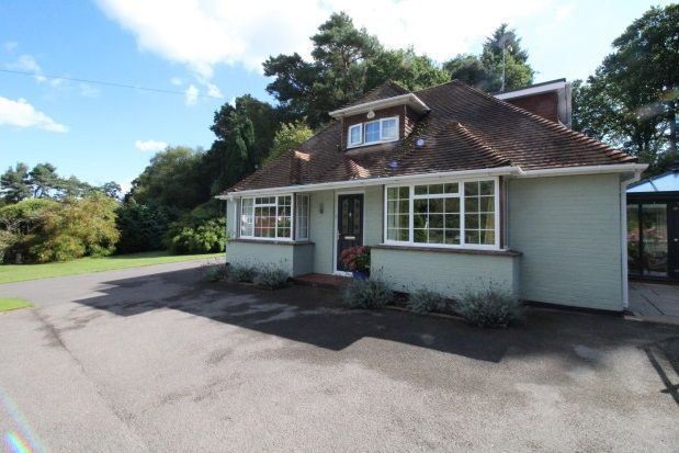 Thumbnail Property to rent in Pine Close, Oaklands Lane, West Lavington, Midhurst
