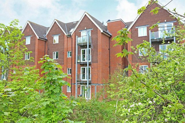 Thumbnail Flat to rent in The Lamports, Alton, Hampshire
