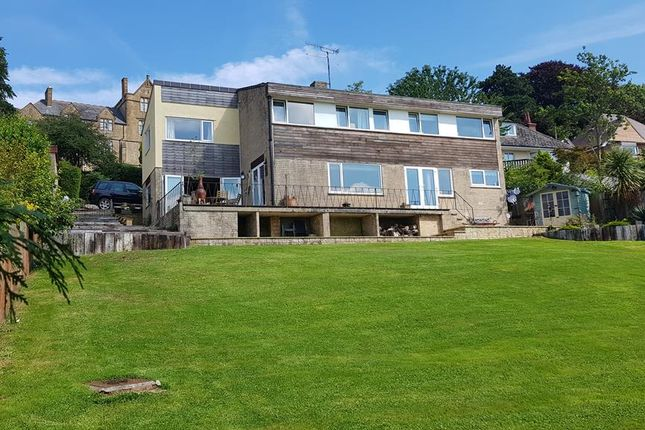 Thumbnail Detached house for sale in Mount Pleasant, Crewkerne