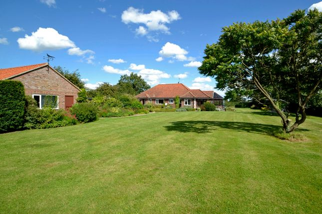 Thumbnail Detached bungalow for sale in East Carleton, Norwich, Norfolk