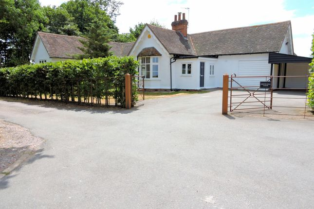 Thumbnail Detached bungalow to rent in Shalford, Braintree