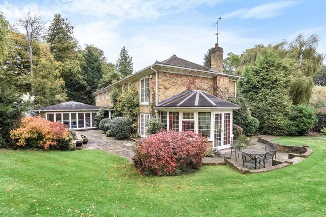 Thumbnail Detached house to rent in Kier Park, Ascot