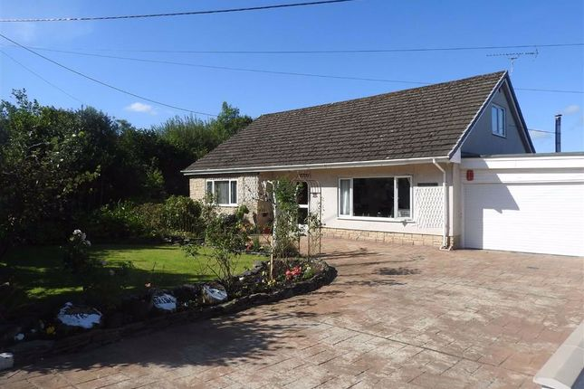 Thumbnail Detached bungalow for sale in Penybryn, Cardigan