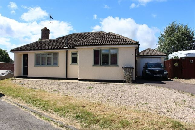 2 bed detached bungalow to rent in Home Farm Close, Gilmorton, Lutterworth, Leicestershire LE17