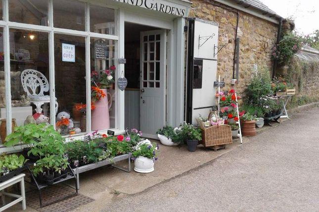 Thumbnail Retail premises for sale in Abbotsbury, Devon
