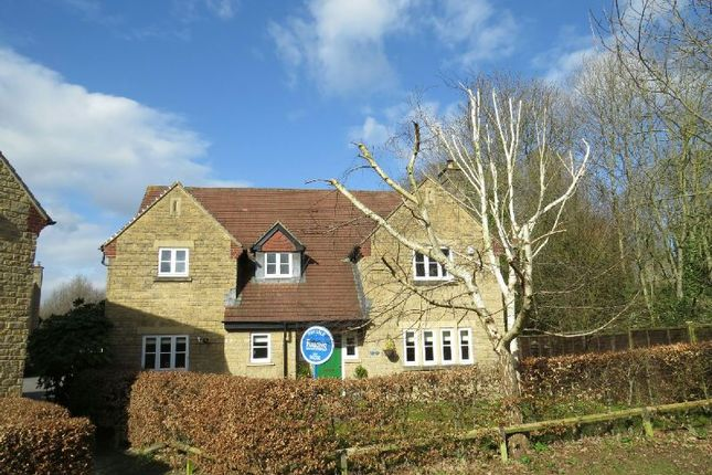 Thumbnail Detached house for sale in Knapps Close, Winscombe
