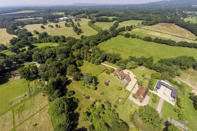 Thumbnail Country house for sale in Horsham Lane, Ewhurst, Cranleigh