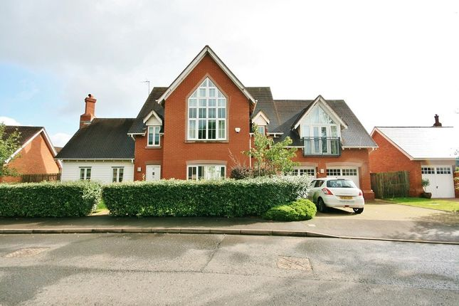 Thumbnail Detached house to rent in Freshwater Drive, Weston, Crewe