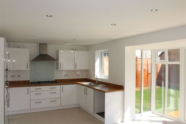 Thumbnail Detached house to rent in Walkers Rise, Monkton Heathfield, Somerset