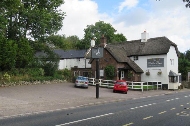 Thumbnail Pub/bar for sale in East Devon Free House EX14, Wilmington, Devon
