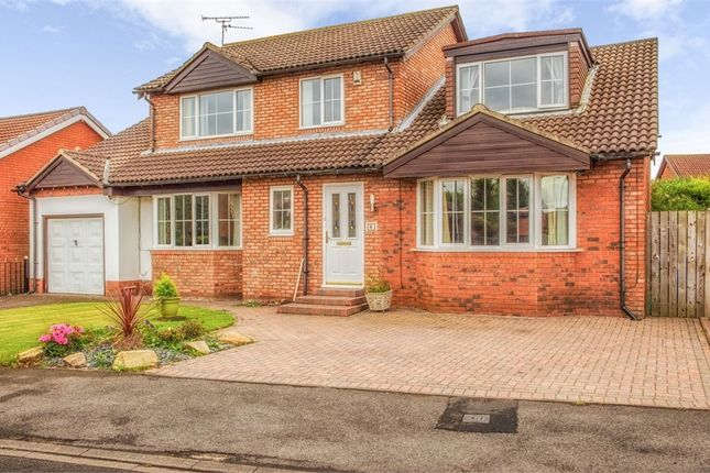Thumbnail Detached house for sale in Hatfield Drive, Seghill, Cramlington, Northumberland