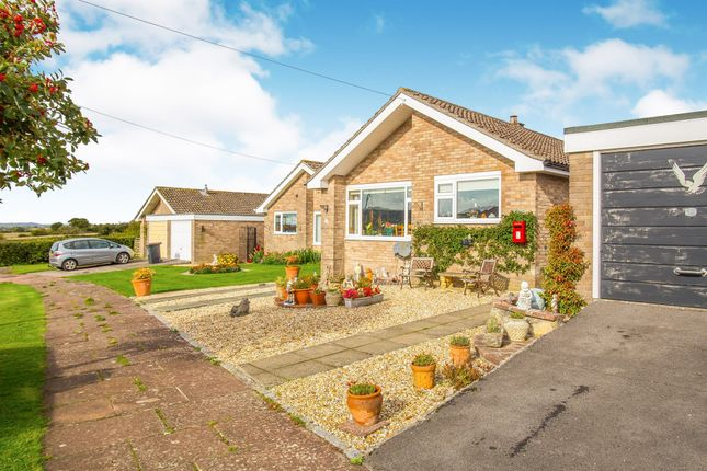 Thumbnail Detached bungalow for sale in Hunts Mead, Sherborne