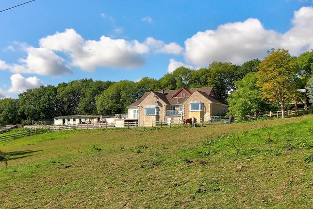 Thumbnail Detached house for sale in Dolmans Hill, Lytchett Matravers, Poole