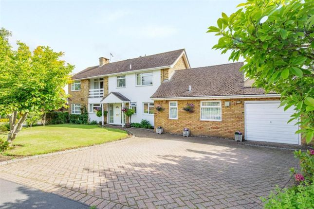 Thumbnail Detached house for sale in Carleton Rise, Welwyn, Herts