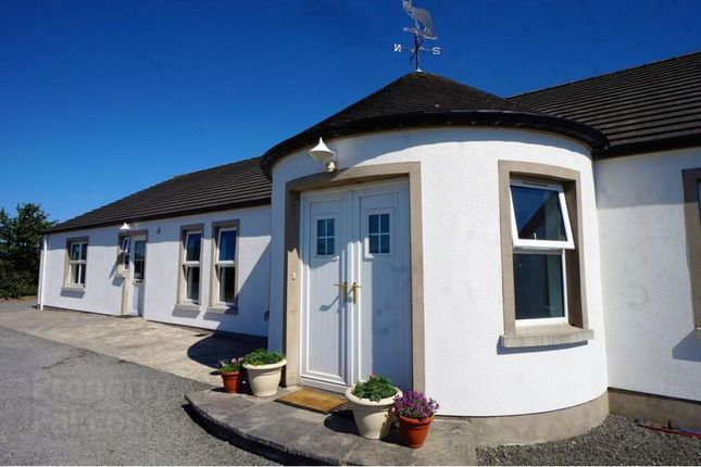 Thumbnail Detached bungalow for sale in Ballyrusley Road, Newtownards