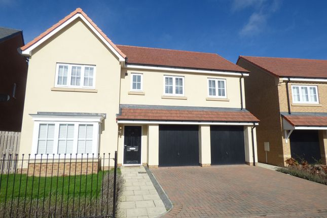 Thumbnail Detached house for sale in Poppy Drive, Blyth
