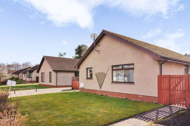 Thumbnail Bungalow for sale in Birch Drive, Maryburgh, Dingwall