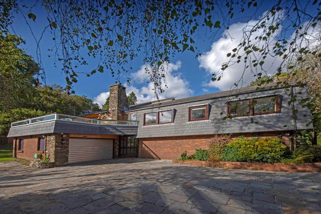 Thumbnail Detached house for sale in Coltshill Drive, Mumbles, Swansea