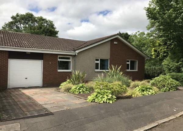 Thumbnail Detached bungalow for sale in Crossdykes, Kirkintilloch, Glasgow