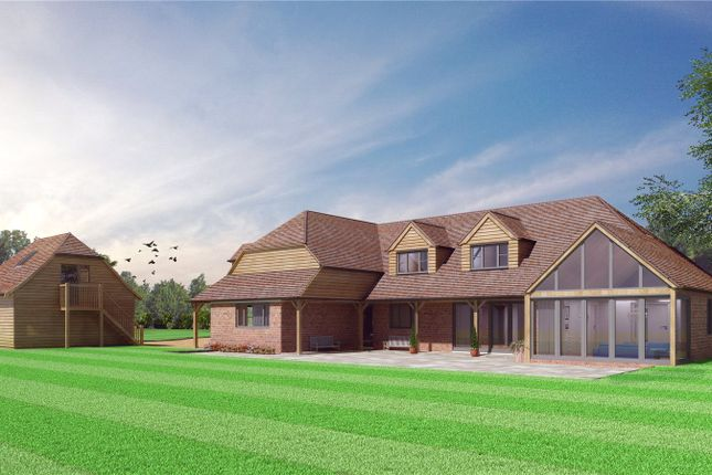 Thumbnail Detached house for sale in Chapmans Town Road, Rushlake Green, East Sussex