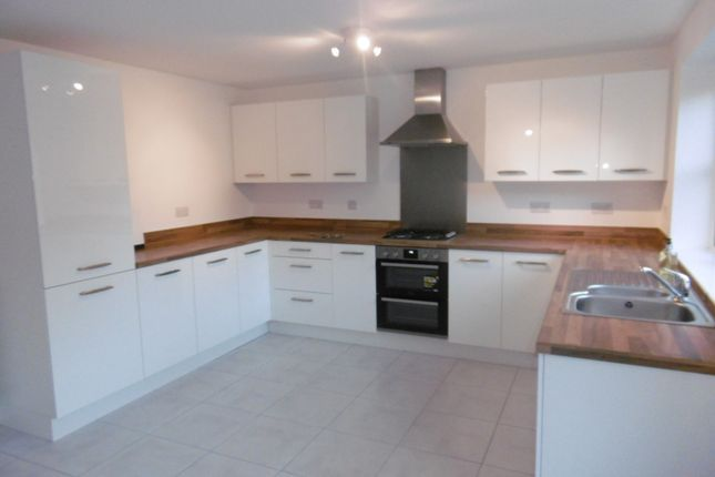 Thumbnail Property to rent in Summer Crescent, Beeston