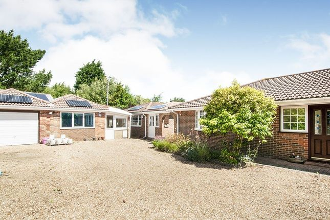 Thumbnail Bungalow for sale in Martineau Lane, Hastings