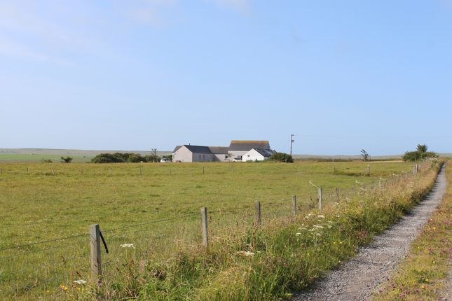 Thumbnail Detached house for sale in Liddie Road, Tankerness, Orkney
