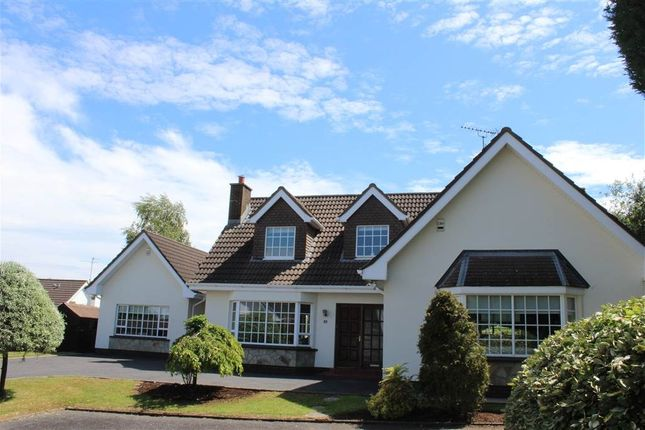 Thumbnail Detached house for sale in Crieve Court, Newry