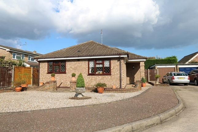Thumbnail Detached bungalow for sale in Marlin Close, Benfleet