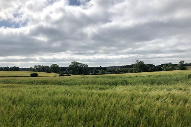 Thumbnail Commercial property for sale in Land At Irnham, Bourne, Lincolnshire