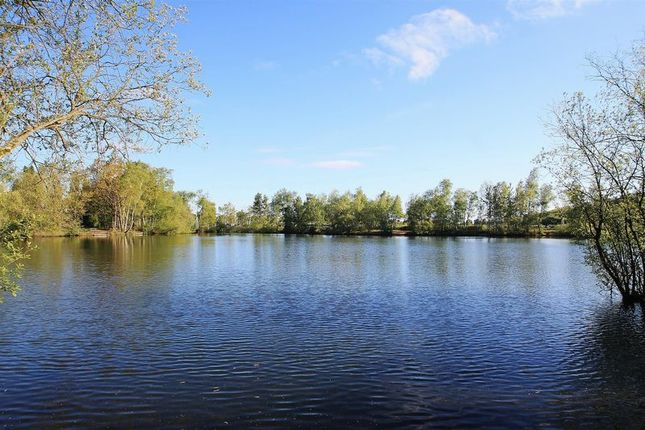 Lakes of Tuckey Grove, Ripley, Woking GU23