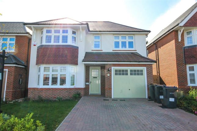 Thumbnail Detached house to rent in Cricketers Grove, Harborne, Birmingham
