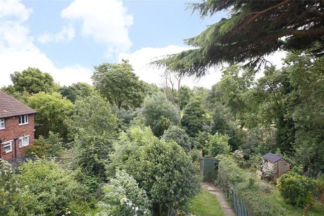 View From Rear of Seymour Villas, London SE20