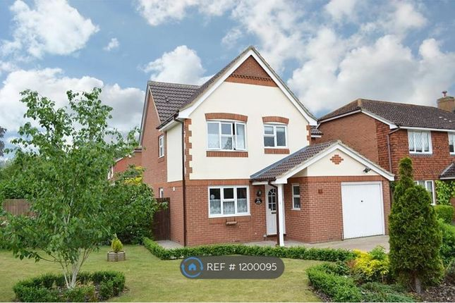 Thumbnail Detached house to rent in Sanger Drive, Woking