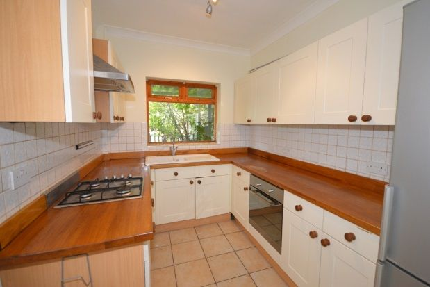 Thumbnail Property to rent in Wadbrough Road, Ecclesall Road