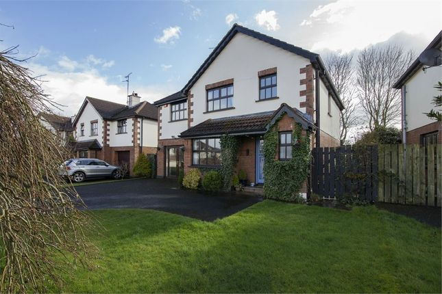 Thumbnail Detached house for sale in Millbrook, Eglinton, Londonderry
