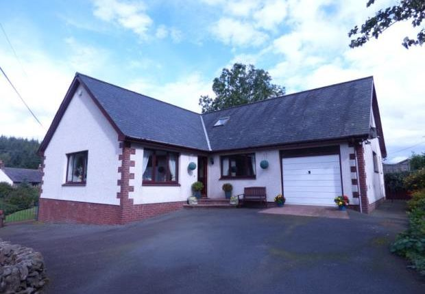 Thumbnail Detached bungalow for sale in Sevinch, Auldgirth, Windsover, Dumfries