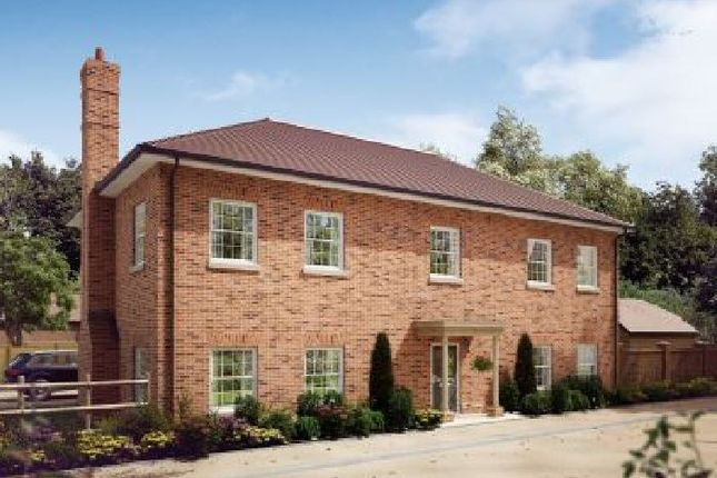 Thumbnail Detached house for sale in Upper Froyle, Hampshire