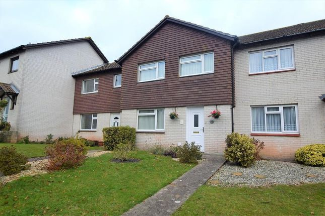 Thumbnail Terraced house for sale in Berry Road, Paignton, Devon