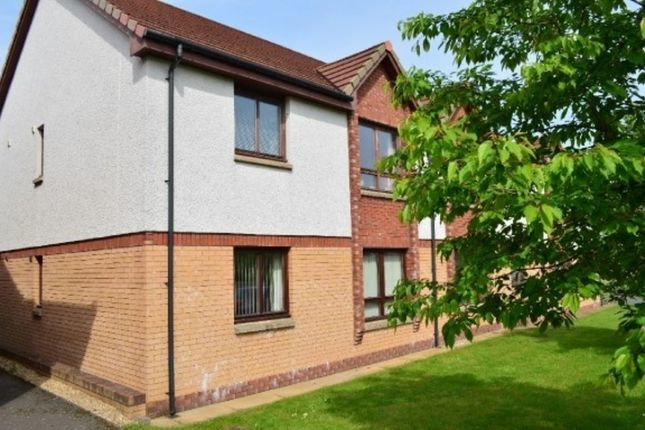 Thumbnail Flat to rent in Gascoigne Court, Falkirk