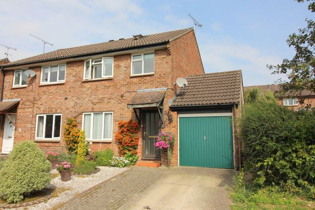 3 bed semi-detached house for sale in Appledown Close, Alresford