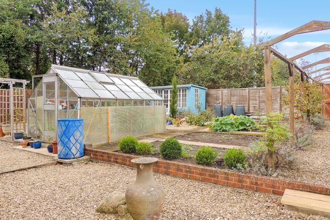 Side & Rear Garden