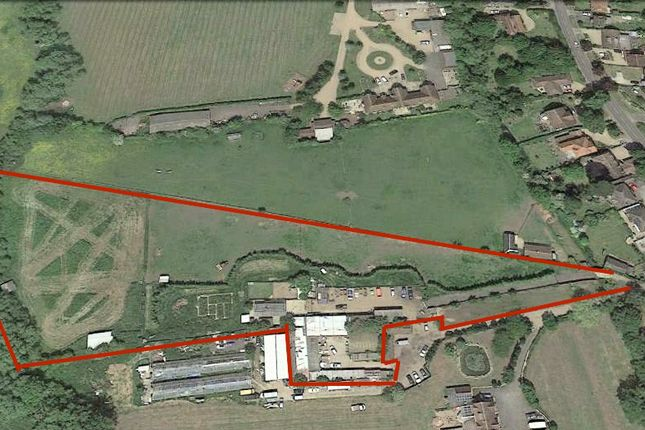 Thumbnail Equestrian property for sale in Staines Road, Wraysbury