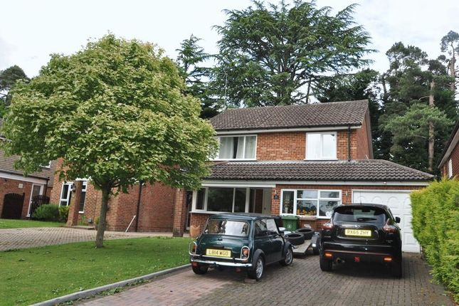 3 bed detached house to rent in Bramble Bank, Frimley Green, Camberley