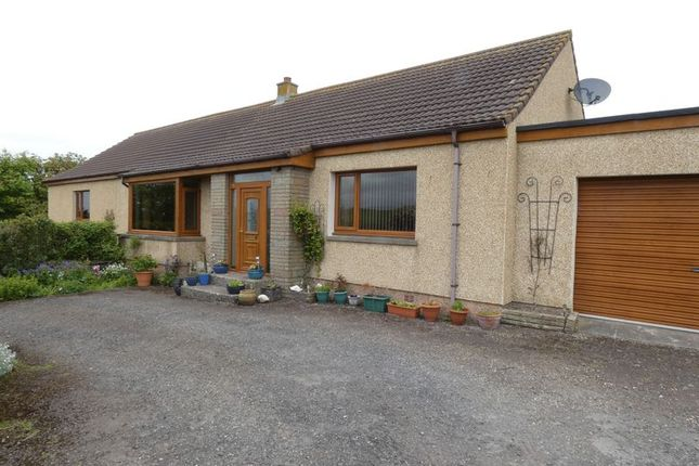 Thumbnail Detached bungalow for sale in Claredon, Thurso