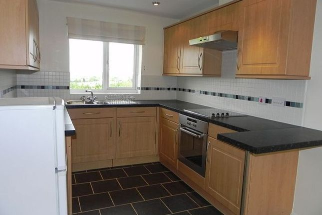 2 bed flat to rent in 5 Laurel House, Palmerston Court, Palmerston Avenue, Wilnecote, Tamworth, Staffs