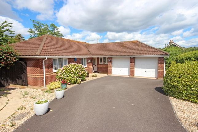 Thumbnail Detached bungalow for sale in Ryalls Court, Seaton