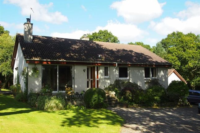 Thumbnail Detached bungalow for sale in Oaklea, Oldtown, Ardgay, Sutherland