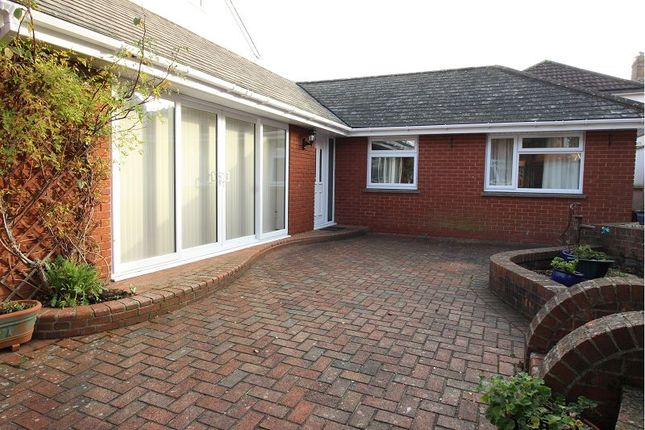 Thumbnail Detached bungalow to rent in West Grove Road, St. Leonards, Exeter
